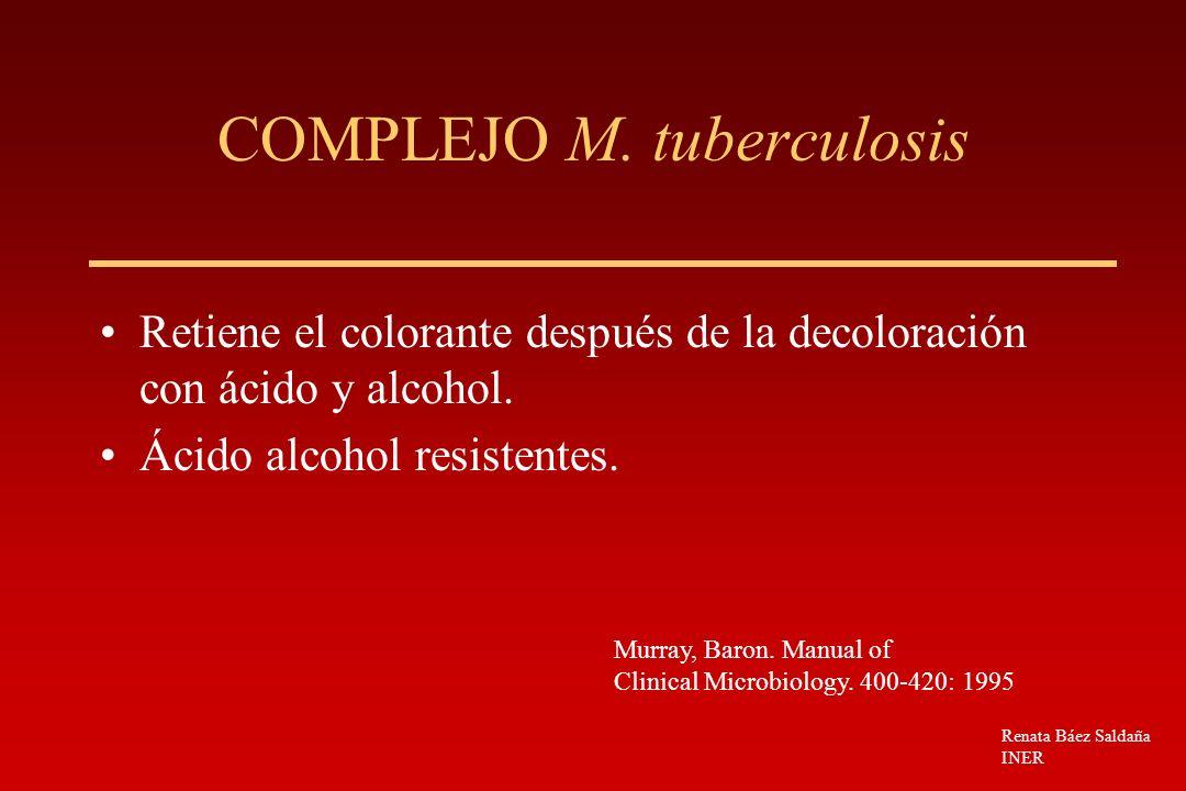 COMPLEJO M. tuberculosis