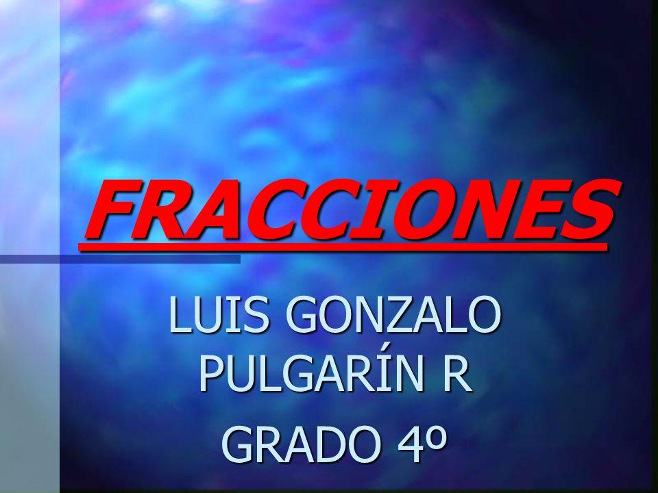 LUIS GONZALO PULGARÍN R GRADO 4º