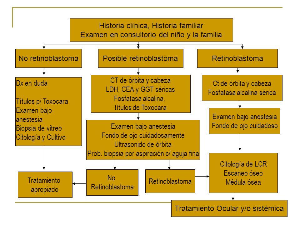 Historia clínica, Historia familiar