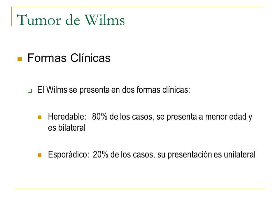 Tumor de Wilms Formas Clínicas