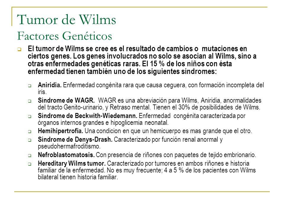 Tumor de Wilms Factores Genéticos