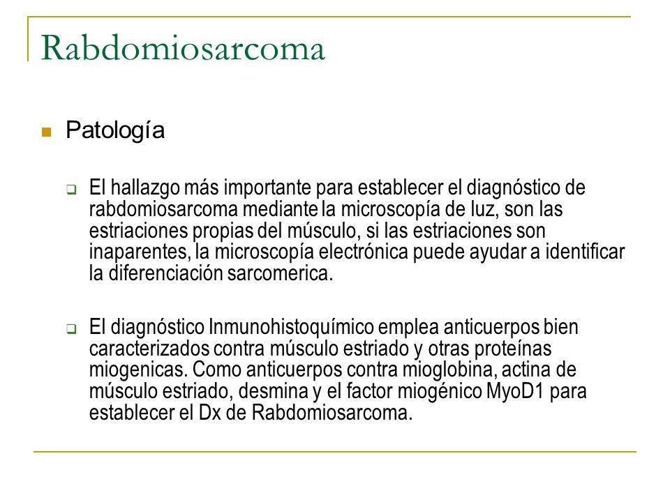 Rabdomiosarcoma Patología