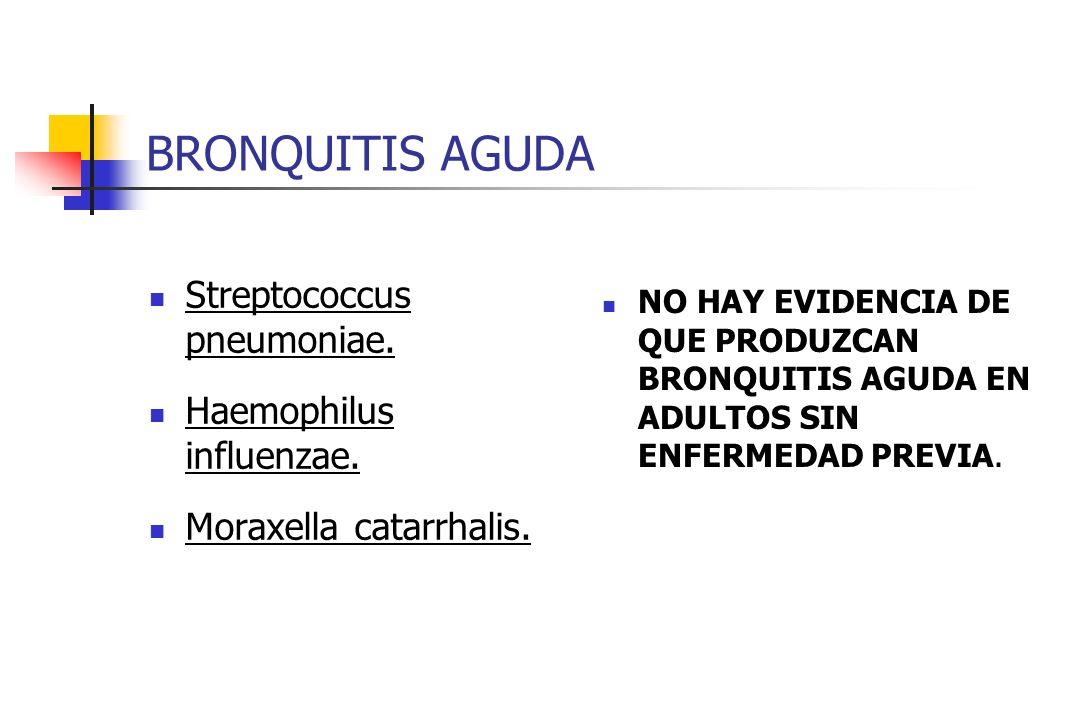 BRONQUITIS AGUDA Streptococcus pneumoniae. Haemophilus influenzae.