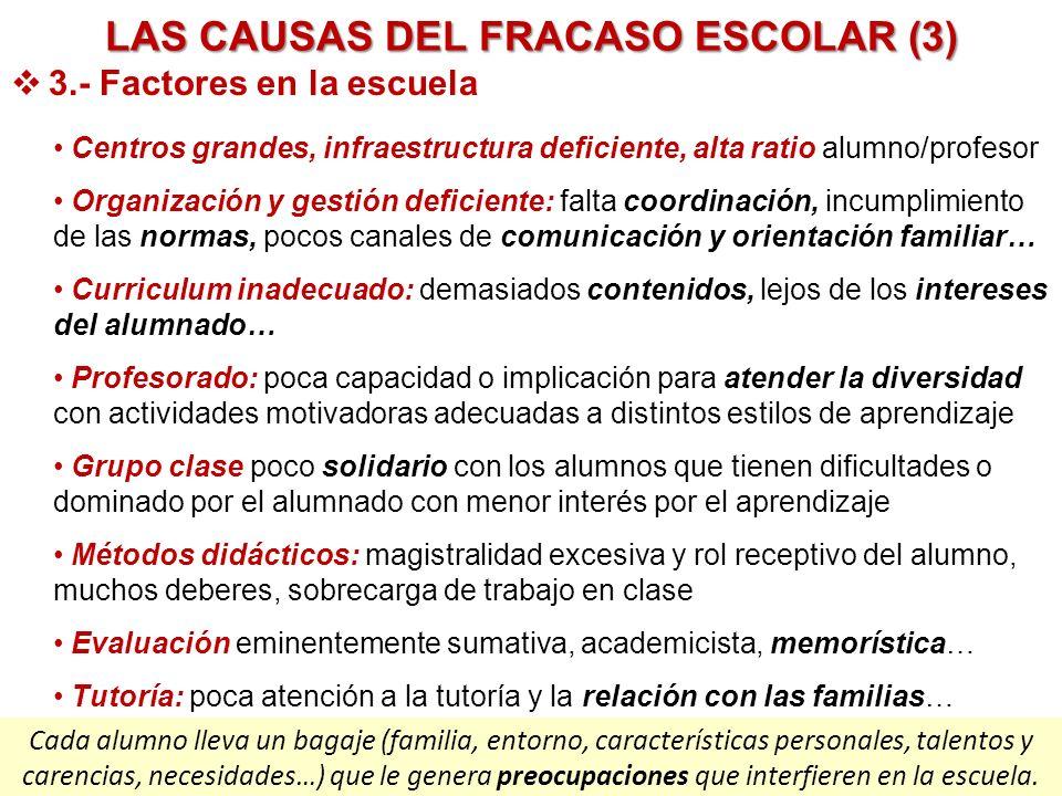 LAS CAUSAS DEL FRACASO ESCOLAR (3)