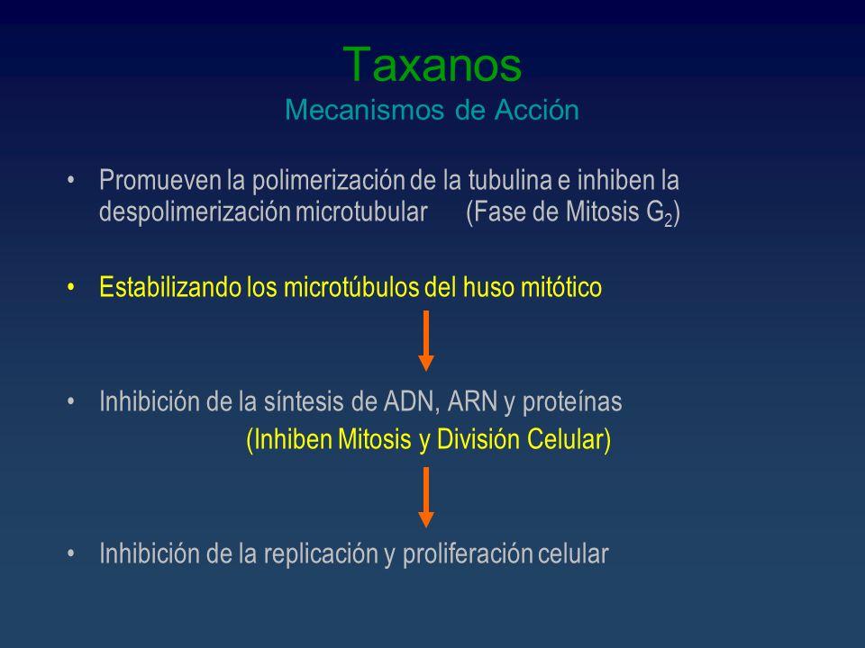 Taxanos Mecanismos de Acción