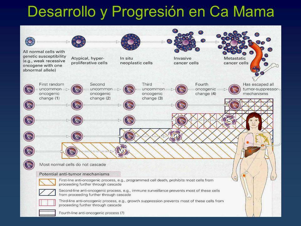 Desarrollo y Progresión en Ca Mama