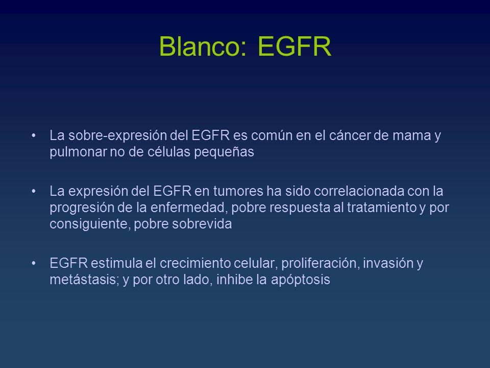 Blanco: EGFRLa sobre-expresión del EGFR es común en el cáncer de mama y pulmonar no de células pequeñas.