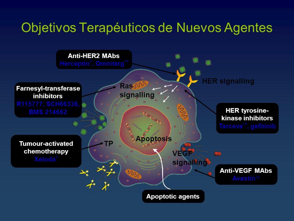 Objetivos Terapéuticos de Nuevos Agentes