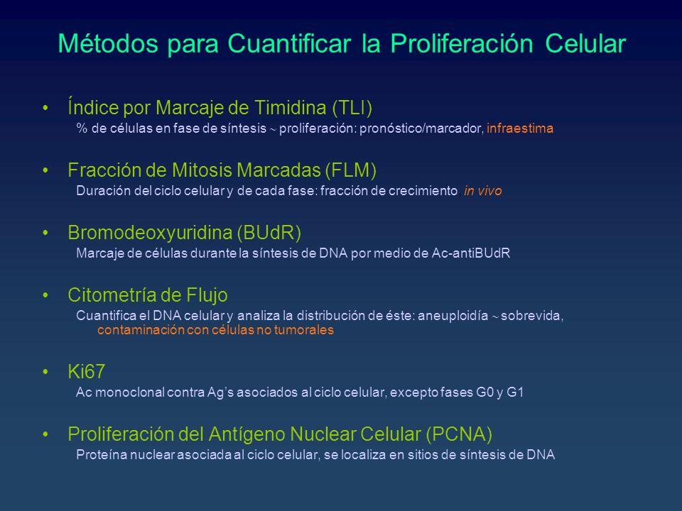 Métodos para Cuantificar la Proliferación Celular