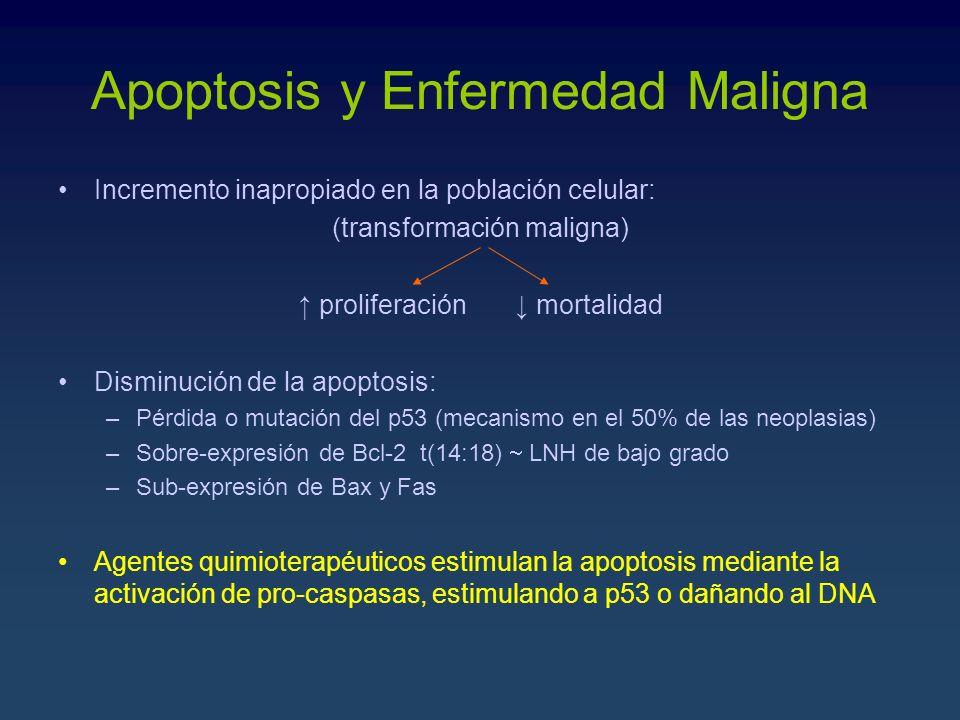 Apoptosis y Enfermedad Maligna
