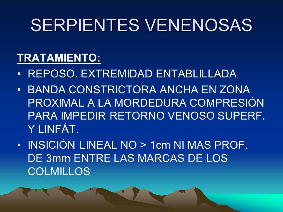 SERPIENTES VENENOSAS TRATAMIENTO: REPOSO. EXTREMIDAD ENTABLILLADA