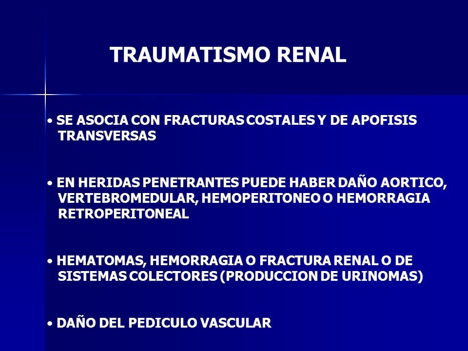 TRAUMATISMO RENAL SE ASOCIA CON FRACTURAS COSTALES Y DE APOFISIS
