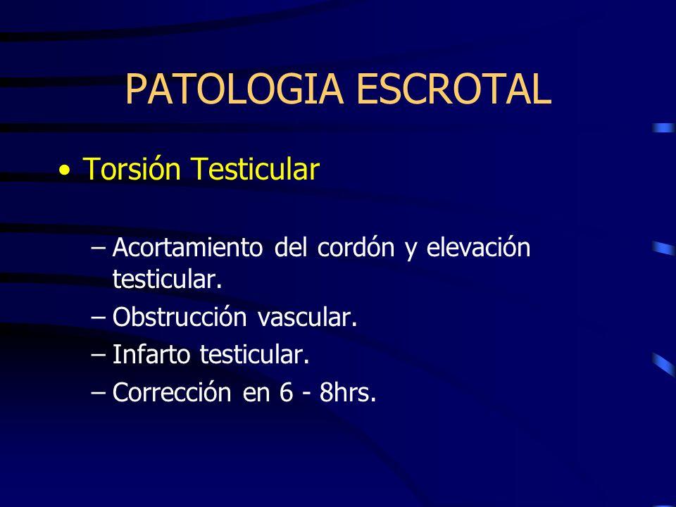 PATOLOGIA ESCROTAL Torsión Testicular