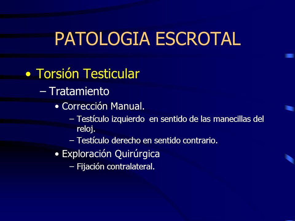 PATOLOGIA ESCROTAL Torsión Testicular Tratamiento Corrección Manual.