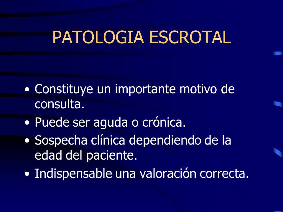 PATOLOGIA ESCROTAL Constituye un importante motivo de consulta.