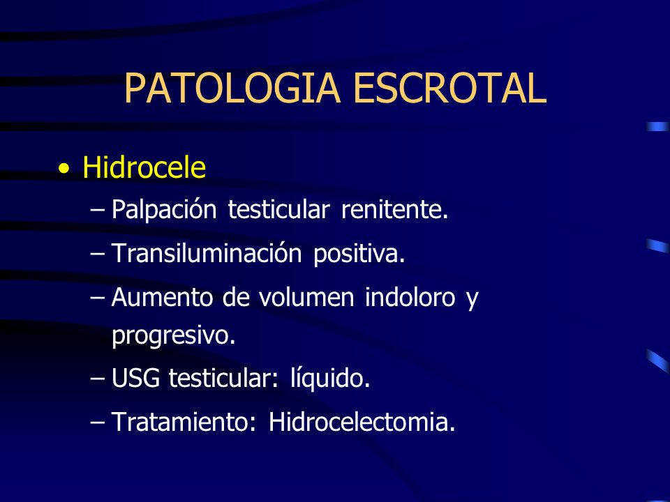 PATOLOGIA ESCROTAL Hidrocele Palpación testicular renitente.