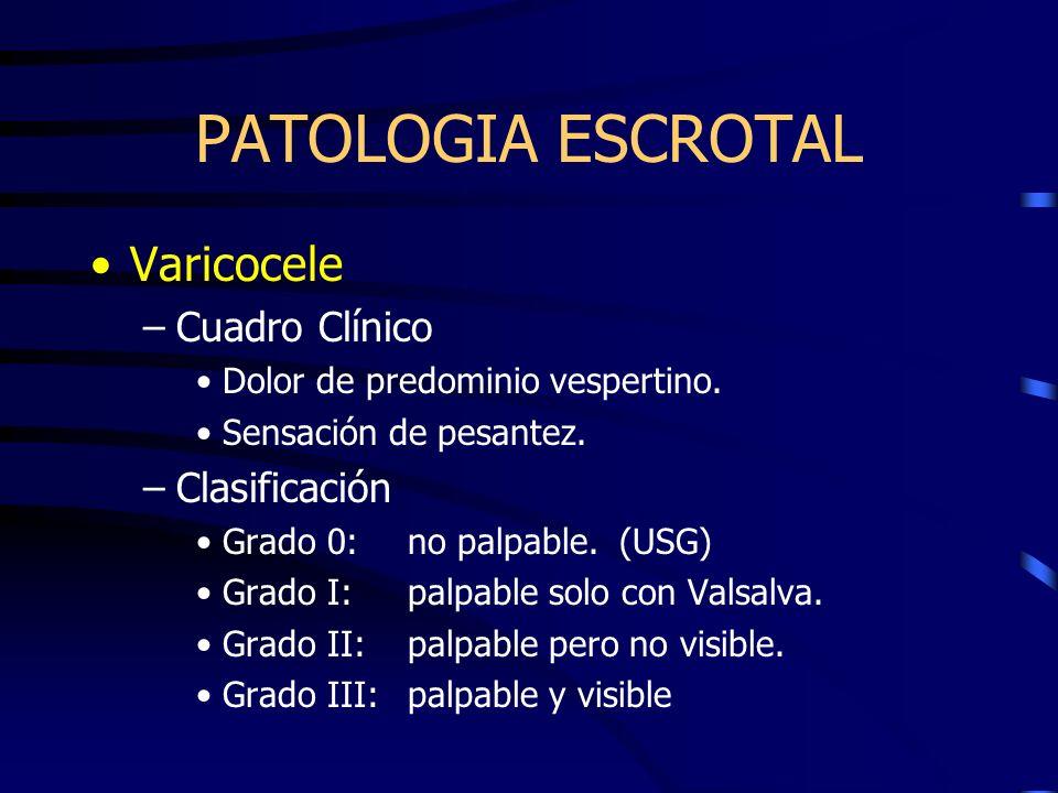 PATOLOGIA ESCROTAL Varicocele Cuadro Clínico Clasificación