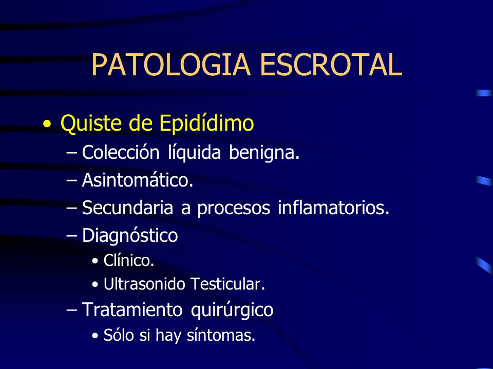 PATOLOGIA ESCROTAL Quiste de Epidídimo Colección líquida benigna.