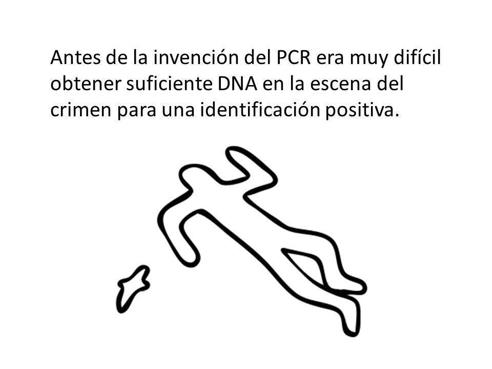 Antes de la invención del PCR era muy difícil obtener suficiente DNA en la escena del crimen para una identificación positiva.