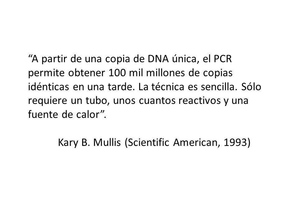A partir de una copia de DNA única, el PCR permite obtener 100 mil millones de copias idénticas en una tarde. La técnica es sencilla. Sólo requiere un tubo, unos cuantos reactivos y una fuente de calor .