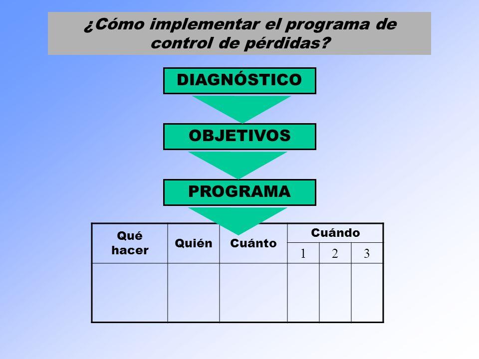 ¿Cómo implementar el programa de control de pérdidas