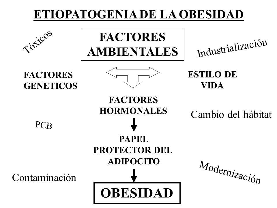 ETIOPATOGENIA DE LA OBESIDAD