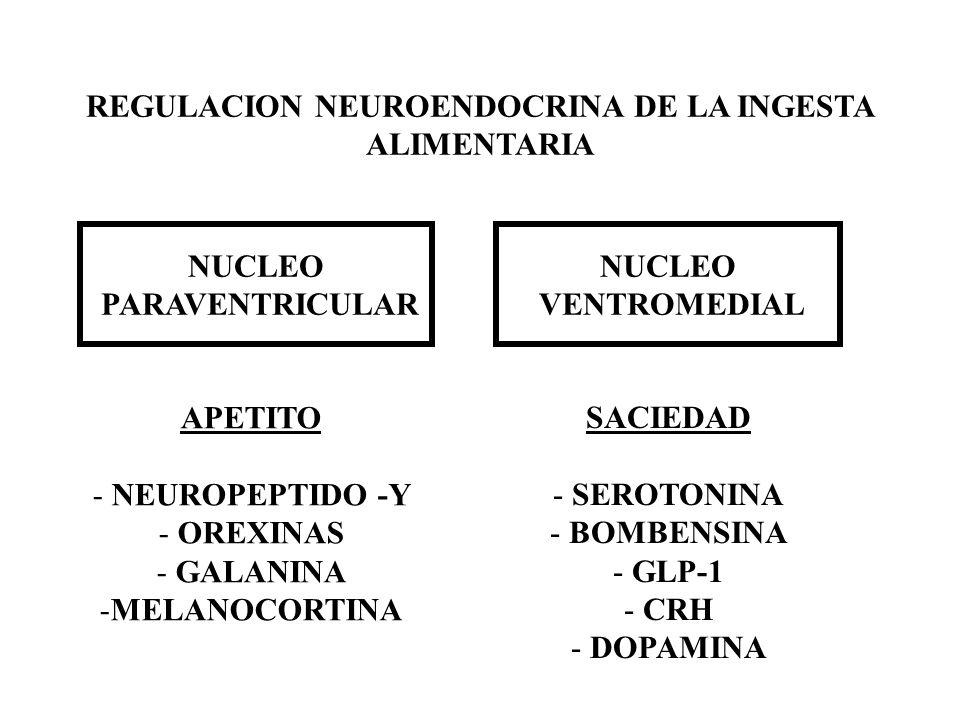 REGULACION NEUROENDOCRINA DE LA INGESTA ALIMENTARIA