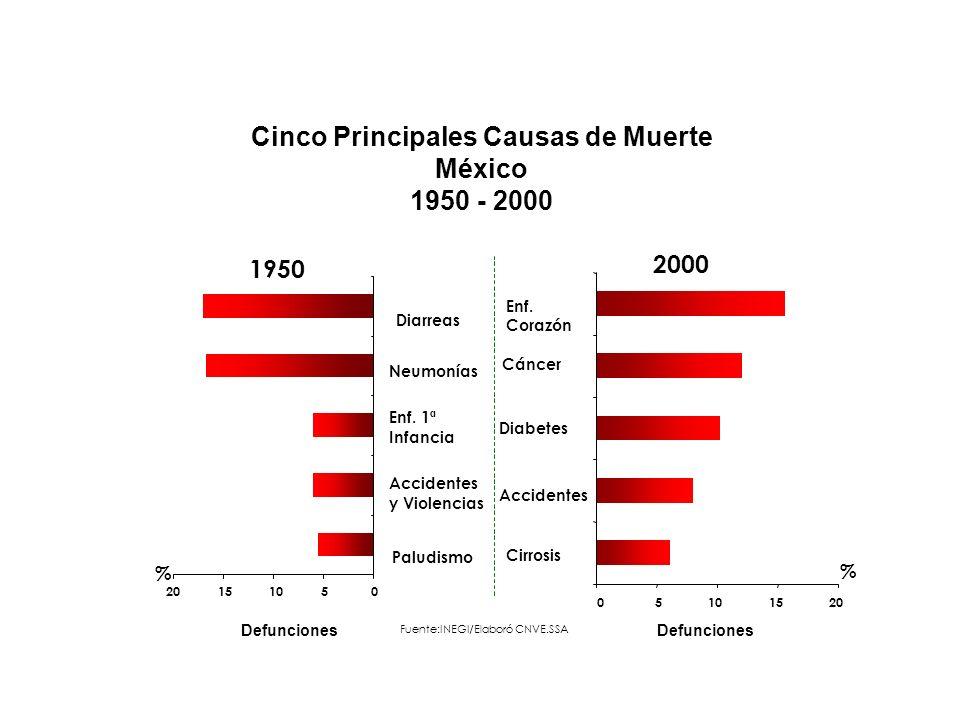 Cinco Principales Causas de Muerte México