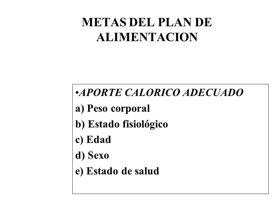 METAS DEL PLAN DE ALIMENTACION