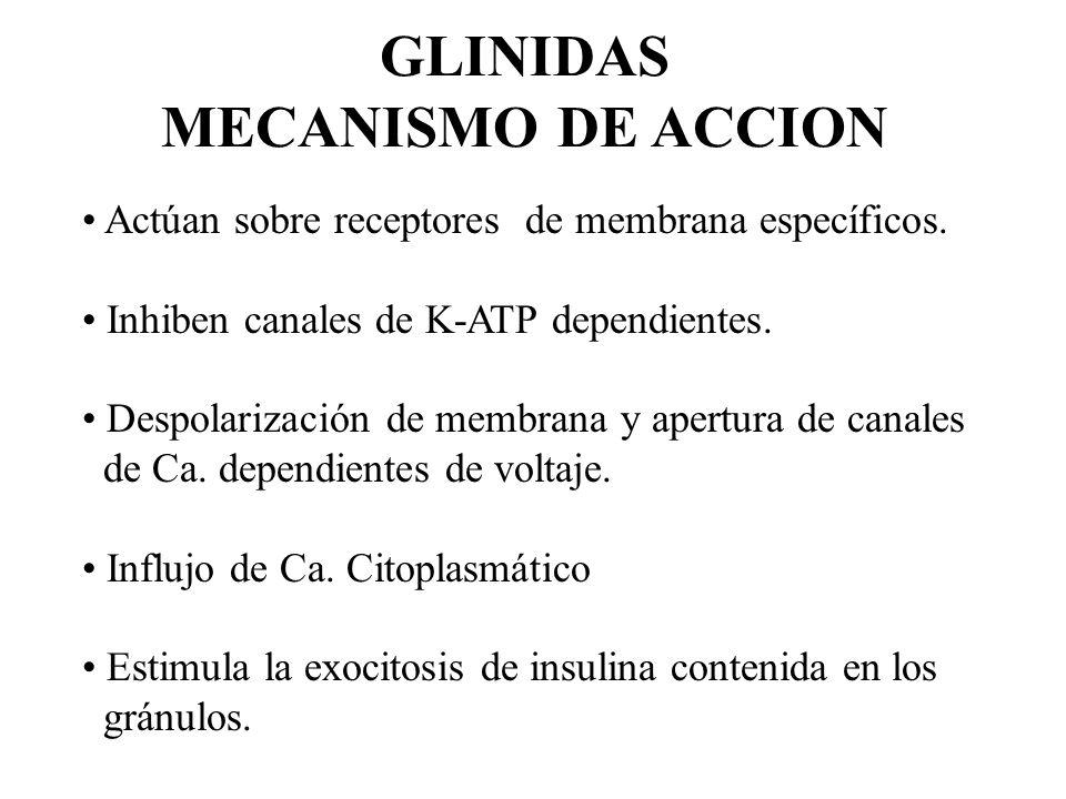 GLINIDAS MECANISMO DE ACCION