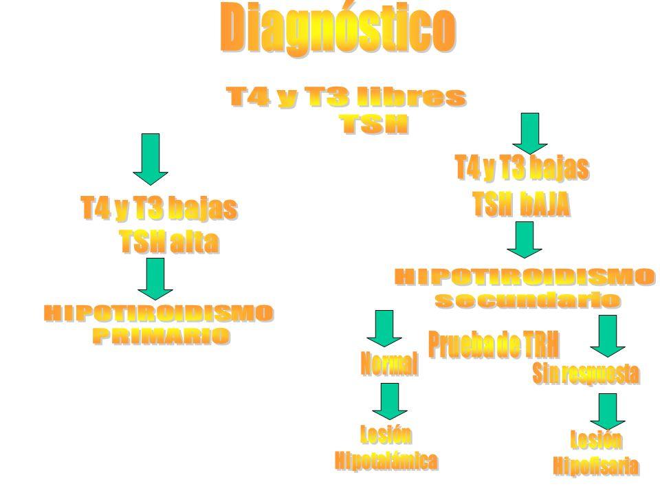 Diagnóstico T4 y T3 libres TSH T4 y T3 bajas TSH alta