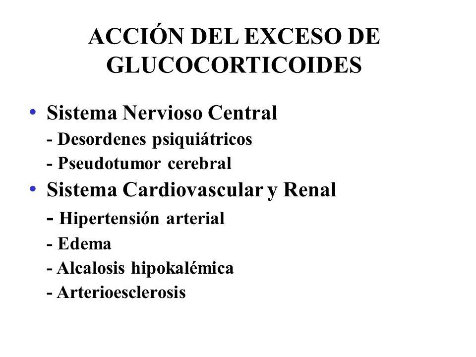 ACCIÓN DEL EXCESO DE GLUCOCORTICOIDES