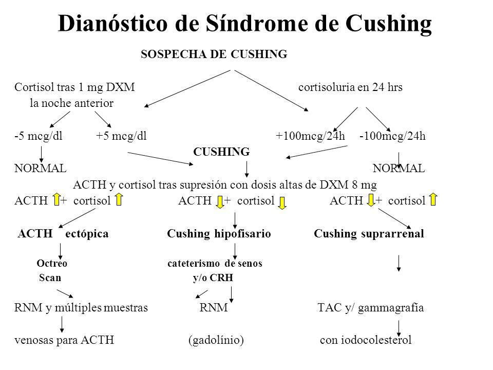 Dianóstico de Síndrome de Cushing