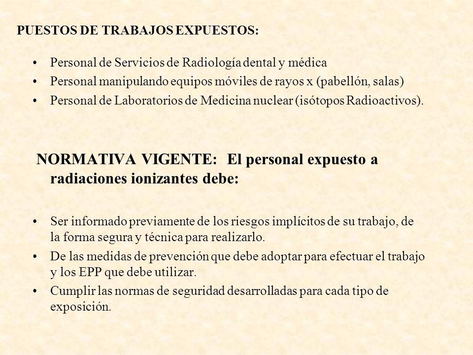 PUESTOS DE TRABAJOS EXPUESTOS: