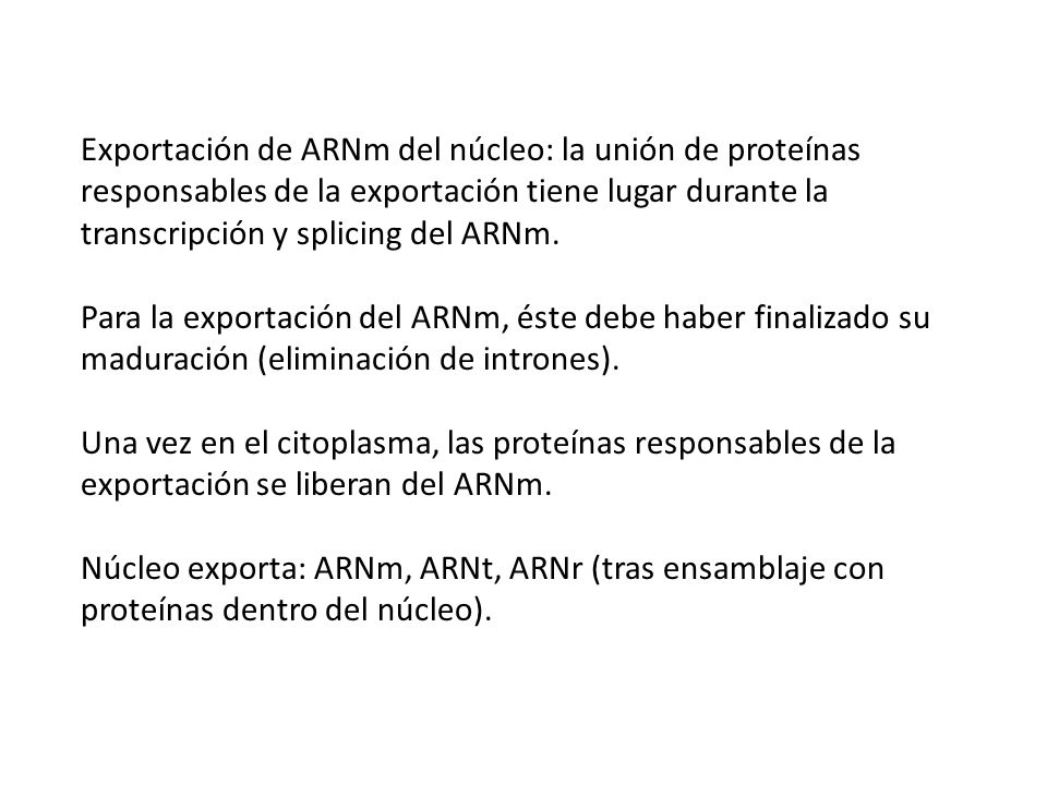 Exportación de ARNm del núcleo: la unión de proteínas responsables de la exportación tiene lugar durante la transcripción y splicing del ARNm.
