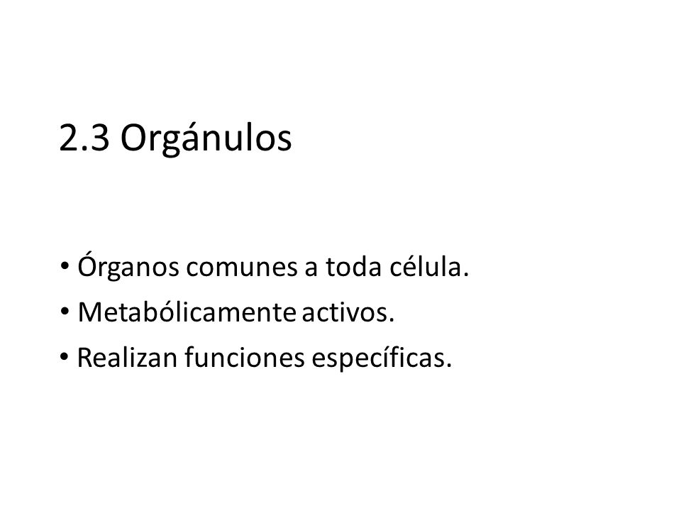 2.3 Orgánulos Órganos comunes a toda célula. Metabólicamente activos.