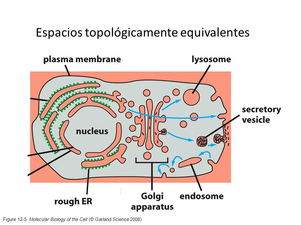 Espacios topológicamente equivalentes