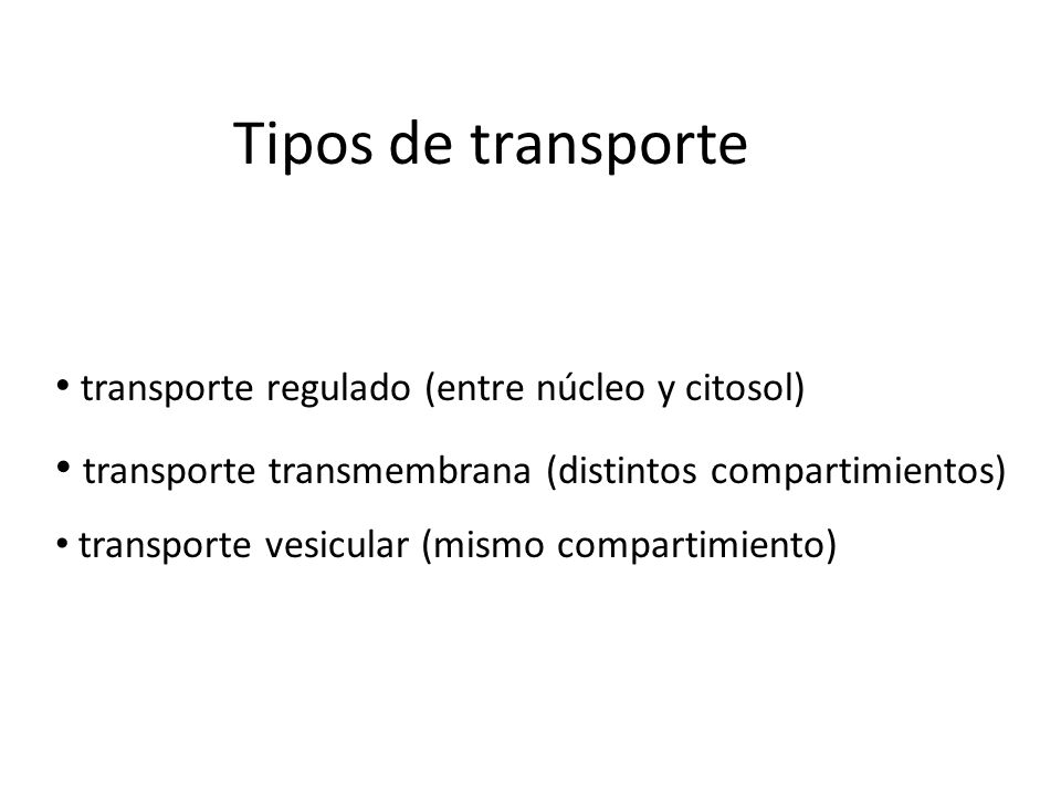 Tipos de transportetransporte regulado (entre núcleo y citosol) transporte transmembrana (distintos compartimientos)