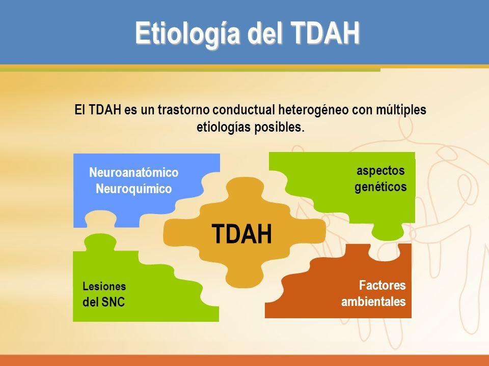 Etiología del TDAH TDAH