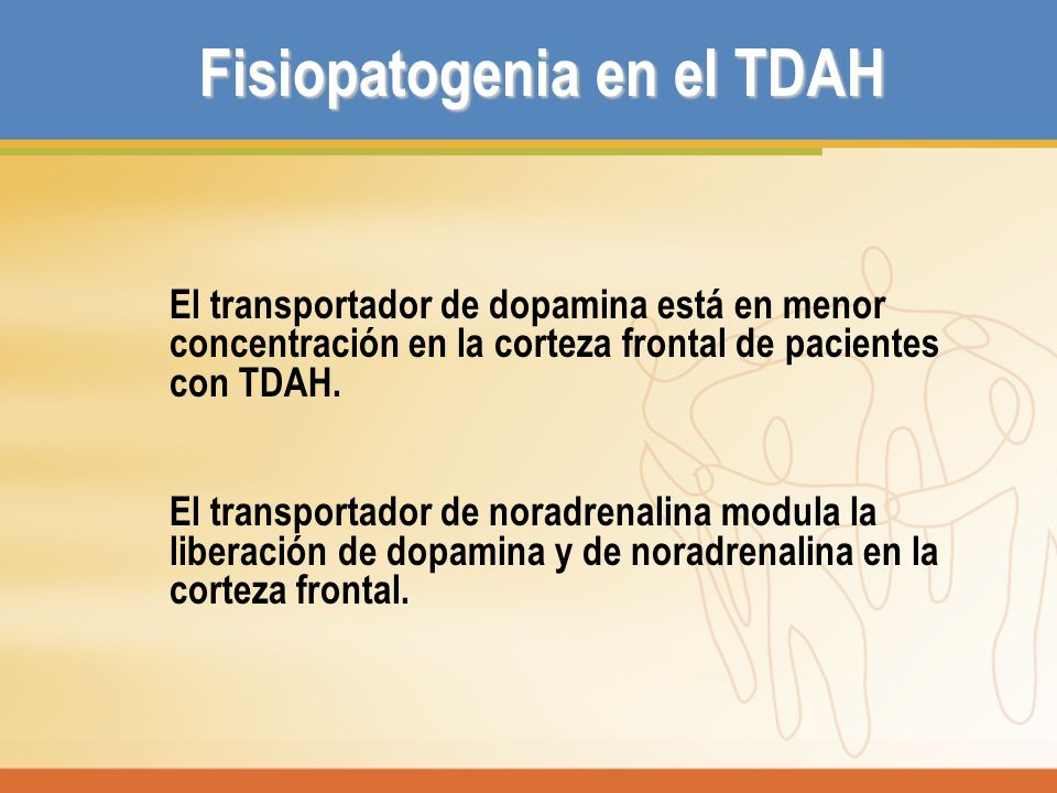 Fisiopatogenia en el TDAH