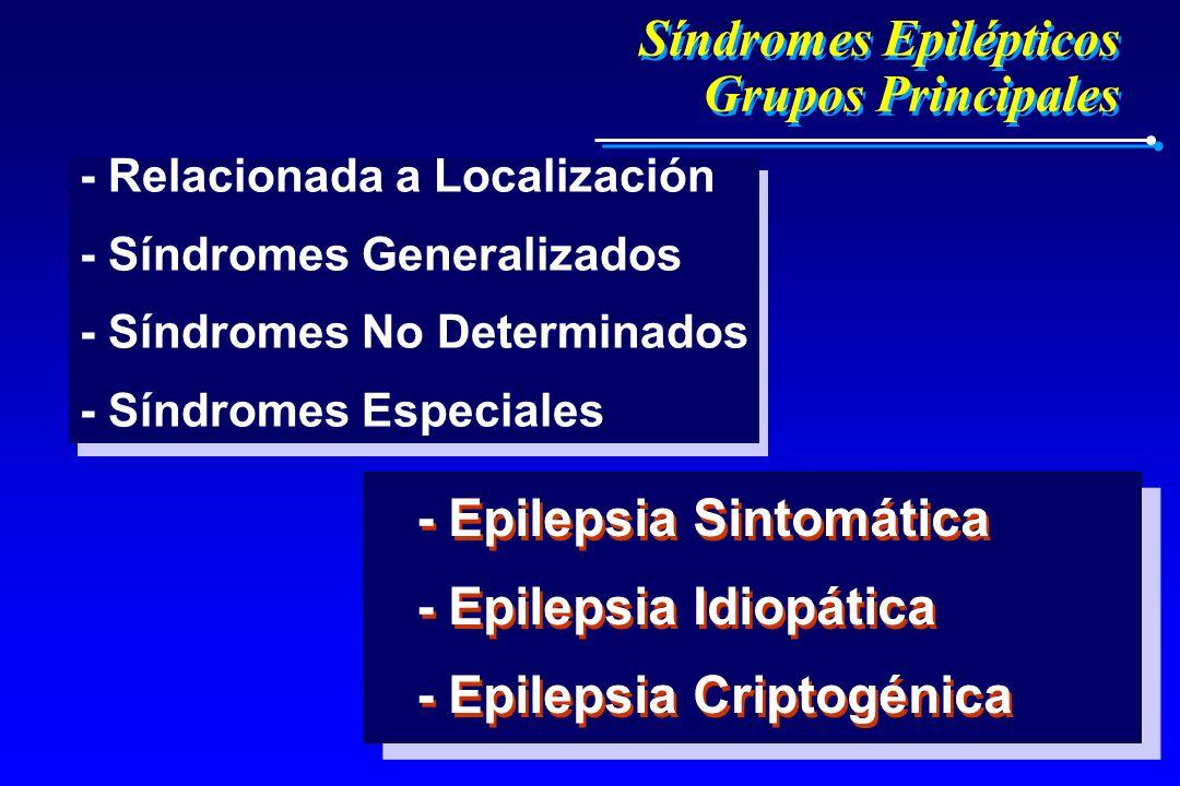 Síndromes Epilépticos Grupos Principales