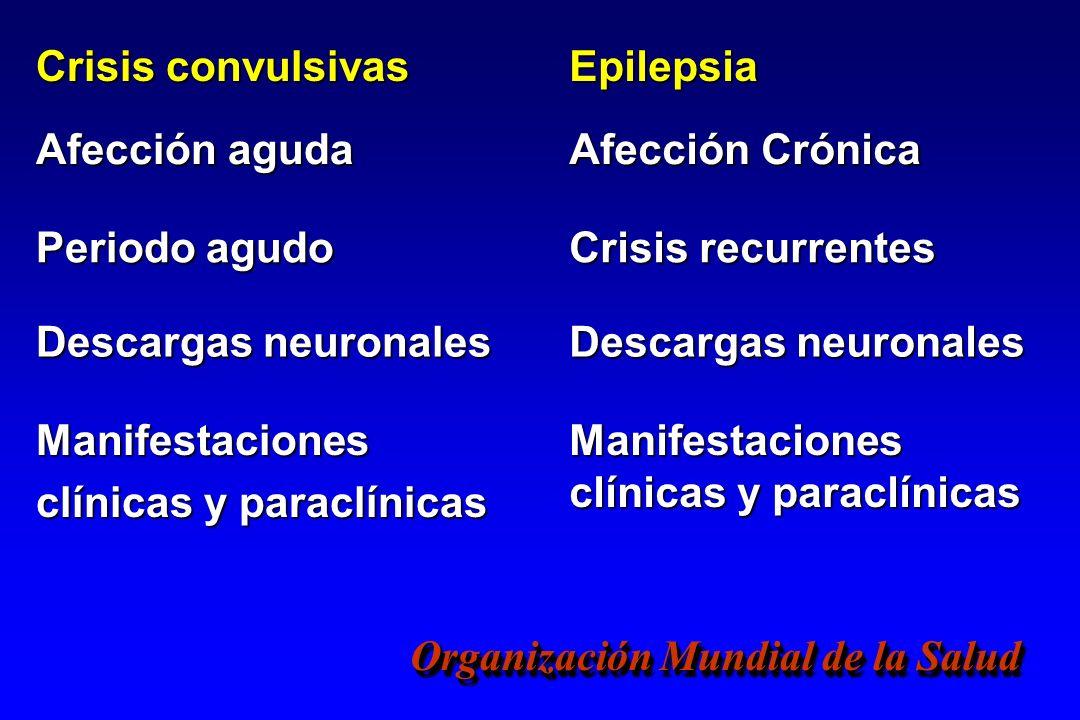 Crisis convulsivasEpilepsia. Afección aguda. Afección Crónica. Periodo agudo. Crisis recurrentes. Descargas neuronales.