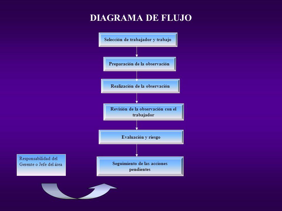 DIAGRAMA DE FLUJO Selección de trabajador y trabajo