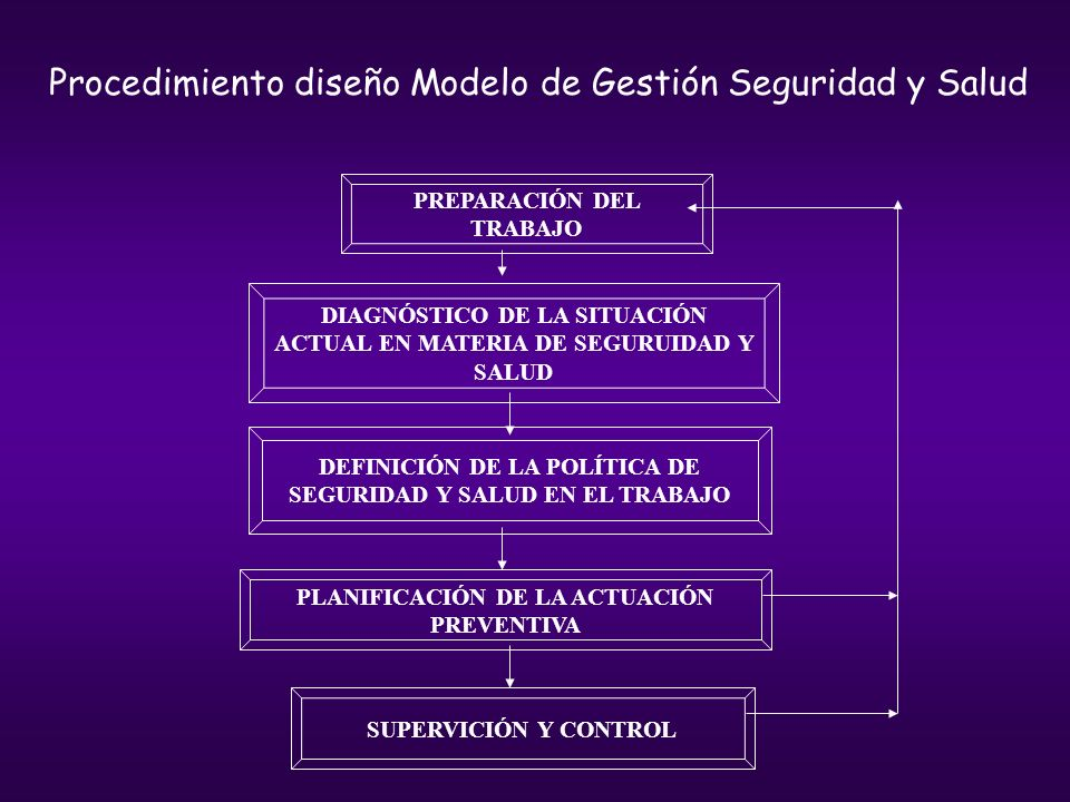 Procedimiento diseño Modelo de Gestión Seguridad y Salud