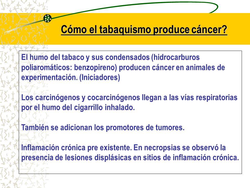 Cómo el tabaquismo produce cáncer