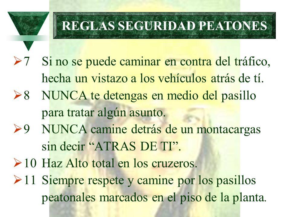 REGLAS SEGURIDAD PEATONES