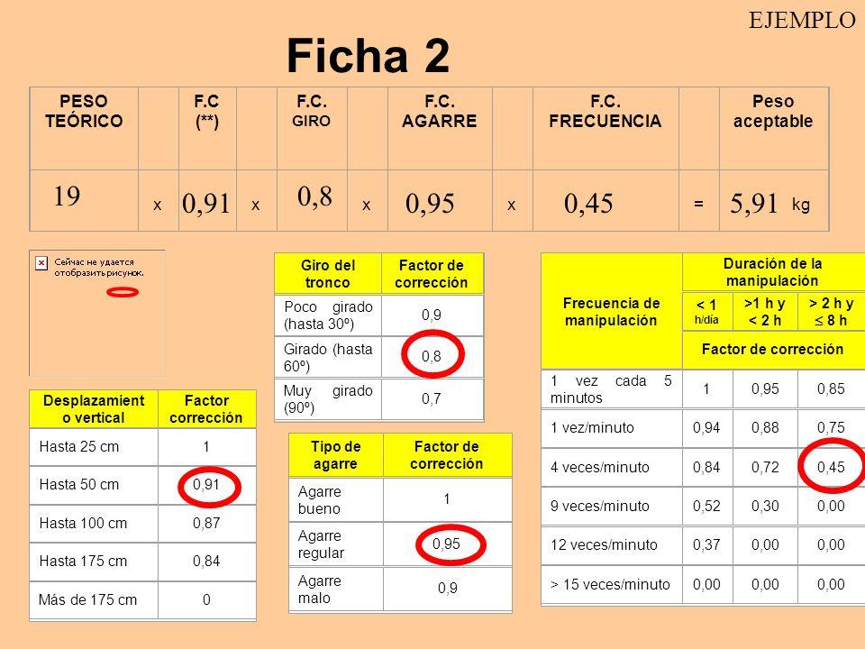 Ficha 2 19 0,8 0,91 0,95 0,45 5,91 EJEMPLO PESO TEÓRICO F.C (**)