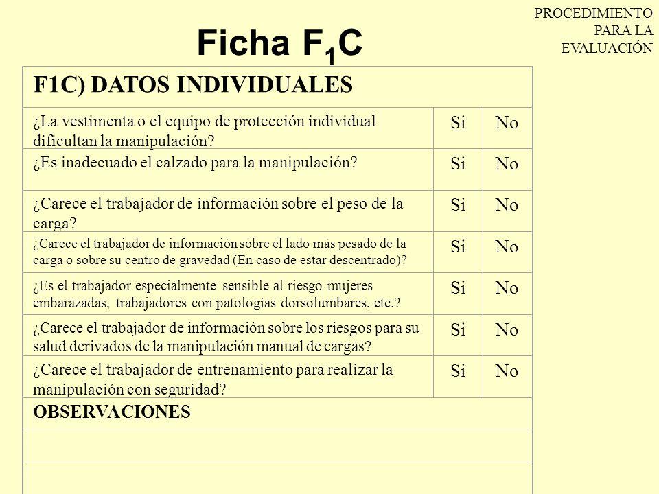 Ficha F1C F1C) DATOS INDIVIDUALES Si No OBSERVACIONES