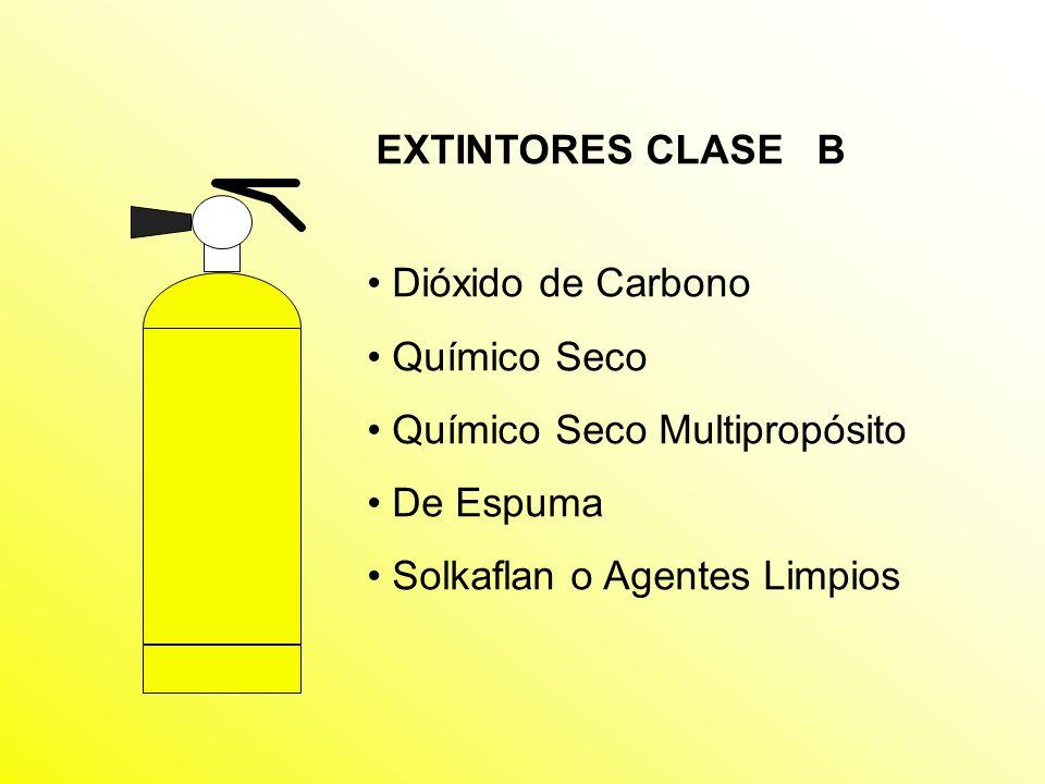 EXTINTORES CLASE B Dióxido de Carbono. Químico Seco.