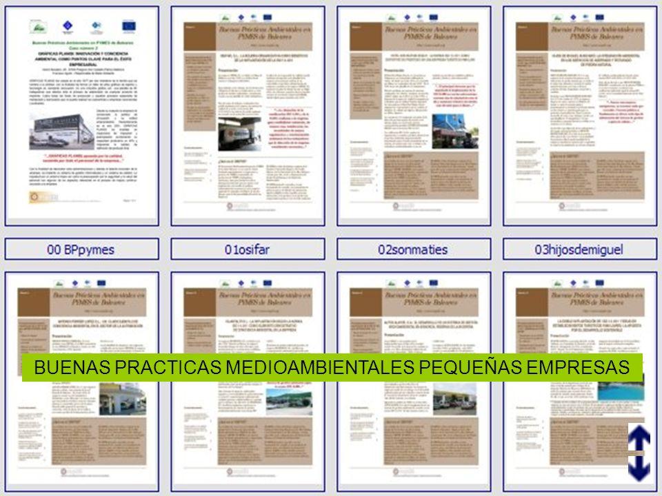 BUENAS PRACTICAS MEDIOAMBIENTALES PEQUEÑAS EMPRESAS